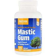 """Мастиковая смола Jarrow Formulas """"Mastic Gum"""" (120 таблеток)"""