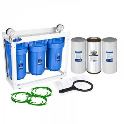 Тройная система обезжелезивания Aquafilter Big Blue 10, фото 2