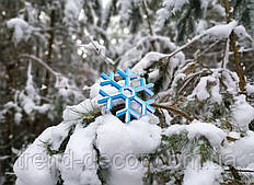 Декоративная снежинка DS 98