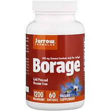 """Бурачник Jarrow Formulas """"Borage"""" містить GLA, 1200 мг (60 гельових капсул)"""