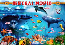 Плакат. Жителі морів. (680х470 мм.) (СП)