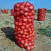 Овощная сетка на 3 ведра 30 кг, сетка для фасовки овощей, фото 4