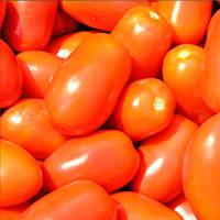 Классик F1 семена томата сливка Nunhems 100 семян
