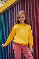 Детский пуловер Classic Set-in Sweat Kids  Различных цветов TR-041