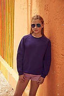 Детский свитшот Premium Raglan Sweat Kids  Различных цветов TR-033
