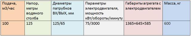 5ЦГ100/125-75-6