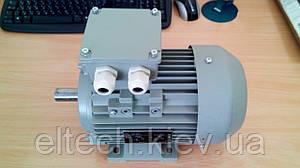 Электродвигатель асинхронный Lammers 13AA-90S-2-В3-1,5 кВт, лапы, 3000 об/мин