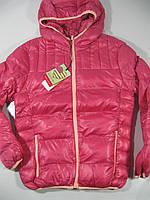 Куртка (еврозима) для девочек, размеры 146/152, Glo-Story, арт.GMA-5291
