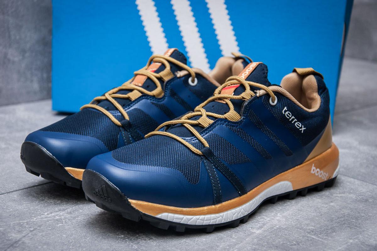 Кроссовки мужские 11662, Adidas Terrex Boost, темно-синие ( 42 43  )