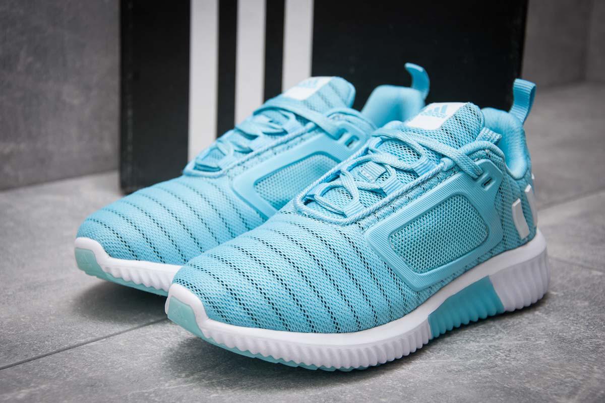 Кроссовки женские 12902, Adidas Climacool, голубые ( 38  )