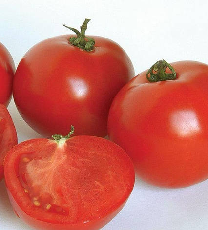 Семена томатов Аполлогет, фото 2