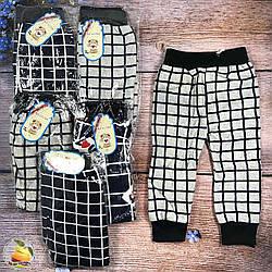 Спортивные штаны с начесом для мальчика Размеры: 2-3,3-4,4-5 лет (9389)