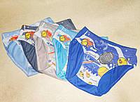 Детский трусики плавки для мальчика 4 5 лет