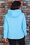 Женская короткая легкая куртка с капюшоном (6расцв). 46-56р., фото 2