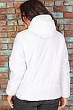 Женская короткая легкая куртка с капюшоном (6расцв). 46-56р., фото 7