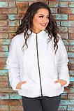Женская короткая легкая куртка с капюшоном (6расцв). 46-56р., фото 8