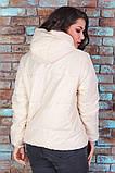 Женская короткая легкая куртка с капюшоном (6расцв). 46-56р., фото 9