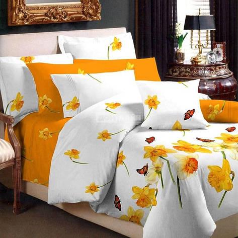 Нарцисс Евро постельное белье ранфорс Viluta, фото 2