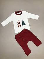 Новогодний комплект. Костюм для новорожденных. Новогодний костюм для малышей. Для встречи Нового года.