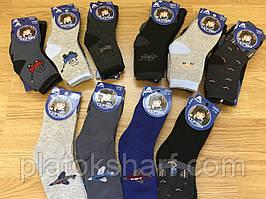 Носки мальчуковые на Махре «Три размера» до 10 лет до 36 размера (С99)