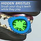 Зубная щетка для собак Сhewbrush   Игрушка для чистки зубов уигрушка для зубов собак собак, фото 3