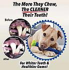 Зубная щетка для собак Сhewbrush   Игрушка для чистки зубов уигрушка для зубов собак собак, фото 5
