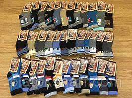 Носки детские, носочки утеплённые Термо под кроссовки «Корона» три размера до 7 лет (3220)