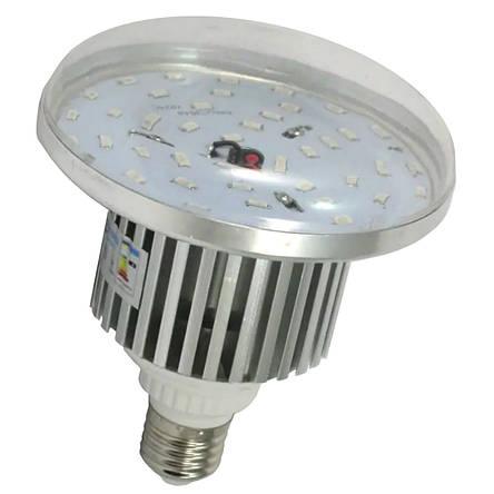Светодиодная фито лампа 16Вт BULB16F  R:B=4:2 (4 красных 2 синих ФИТО свет), фото 2