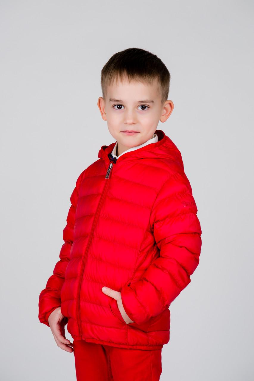 Детская куртка для мальчика BRUMS Италия 181BFAA001 Красный