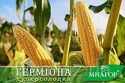 Герміона (Юрмала) F1 насіння кукурудзи суперсолодкої Мнагор 50 насінин