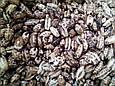 Кофейные зерна (воздушный кукурузный рис) 1 кг, фото 2