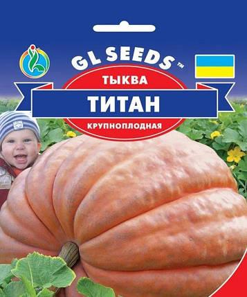 Тыква Титан, 20 г - Семена тыквы, фото 2