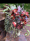 Искусственный декоративный цветок, фото 4