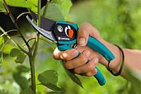 Как выбрать секатор: лучшие секаторы для обрезки деревьев и веток