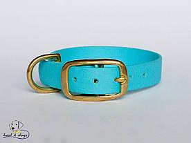 Ошейник из биотана, Голубой Светлый, 25мм(пряжка латунь)