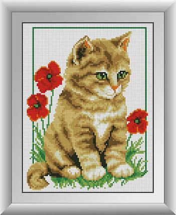 30142 Набор алмазной мозаики Котенок в маках, фото 2