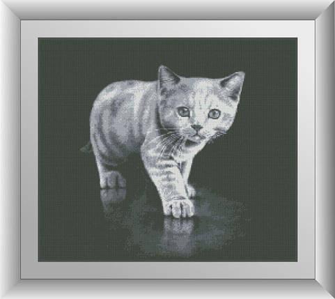 30146 Набор алмазной мозаики Серый котенок, фото 2