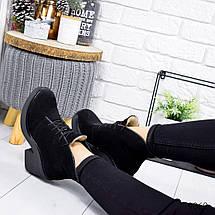 Черные ботильоны натуральная замшевые устойчивый каблук, фото 3