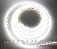 Светодиодная лента 220V SMD3014 120LED IP68 White Econom