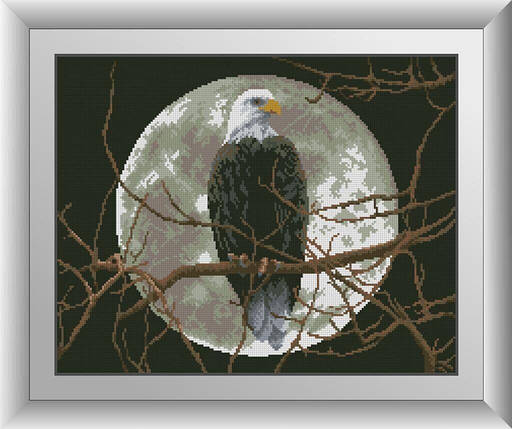30238 Набор алмазной мозаики Орел под луной, фото 2