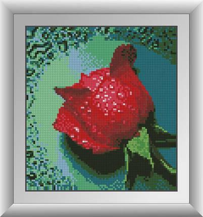 30288 Набор алмазной мозаики Роса на красной розе, фото 2