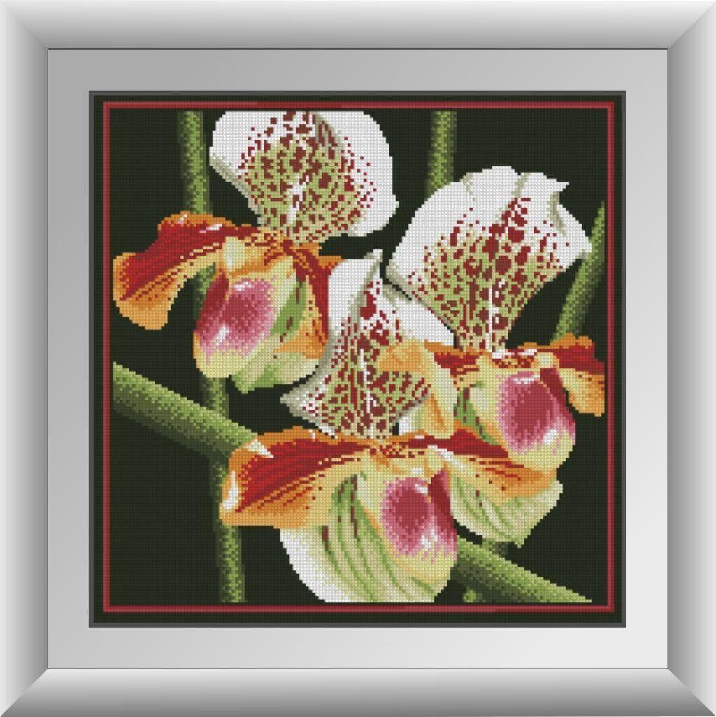 30411 Набор алмазной мозаики Хищная орхидея