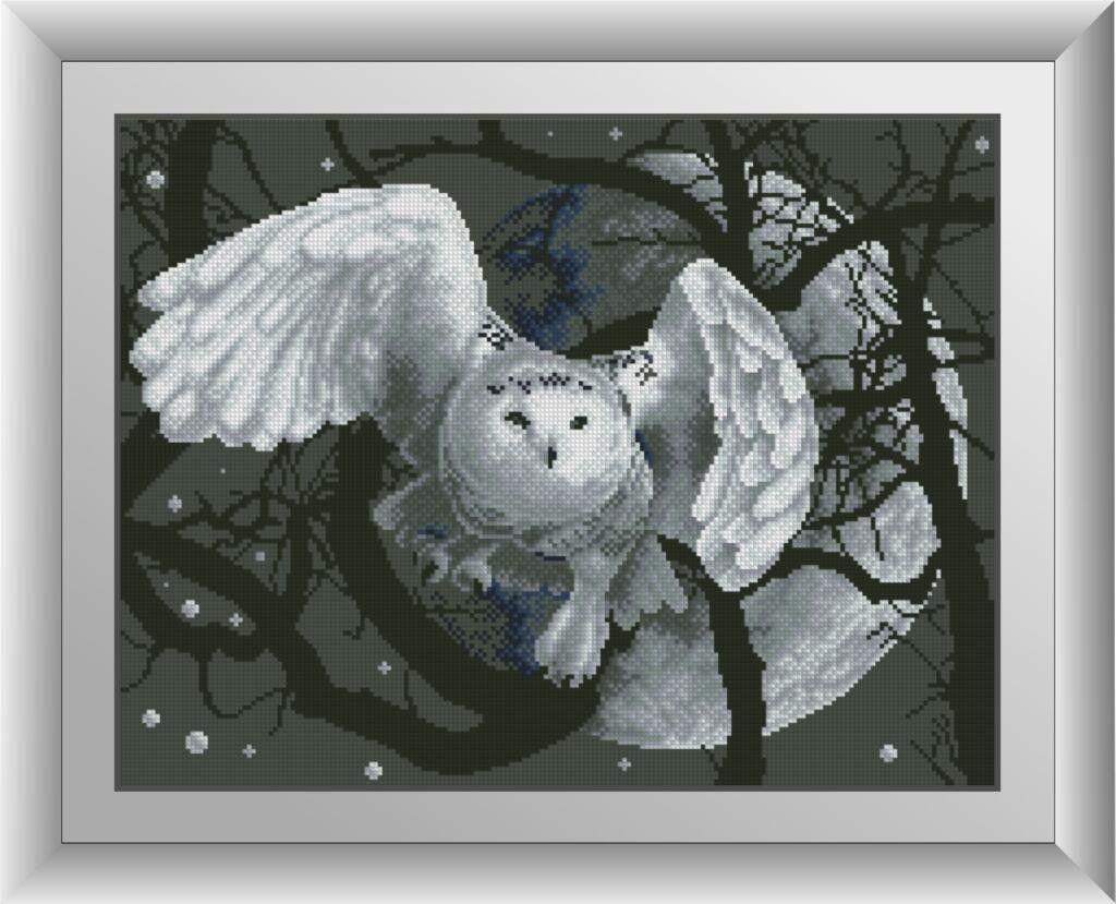 30527 Набор алмазной мозаики Ночная сова