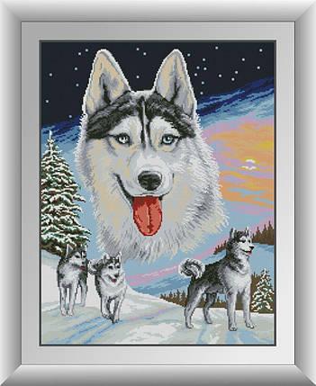 30673 Набор алмазной мозаики Волки, фото 2