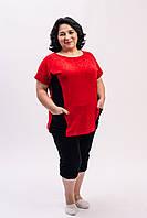 Женский прогулочный костюм бриджи с туникой красный с черным из велюра Х/Б батальные размеры