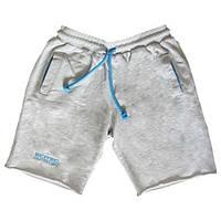 Шорты Scitec Nutrition shorts sports grey