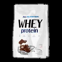 Протеин способствует росту и поддержанию мышечной массы в человеческом организме
