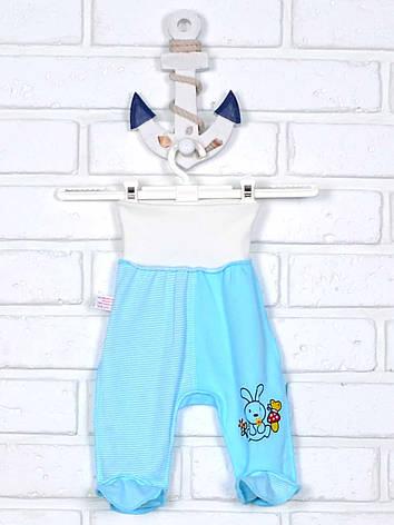 Ползунки для новорожденного бело-голубые 56, фото 2
