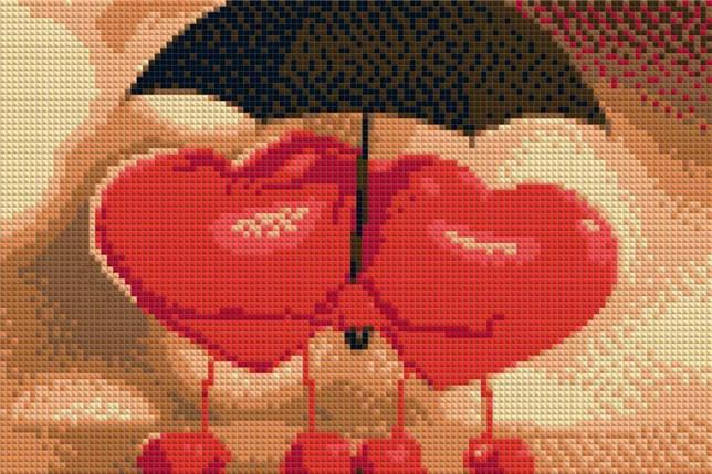 КДИ-0038 Набор алмазной вышивки Под одним зонтом, фото 2