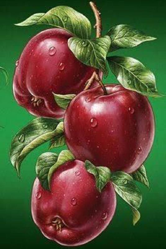 КДИ-0045 Набор алмазной вышивки Яблоки